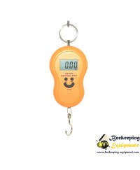 Handheld digital scales