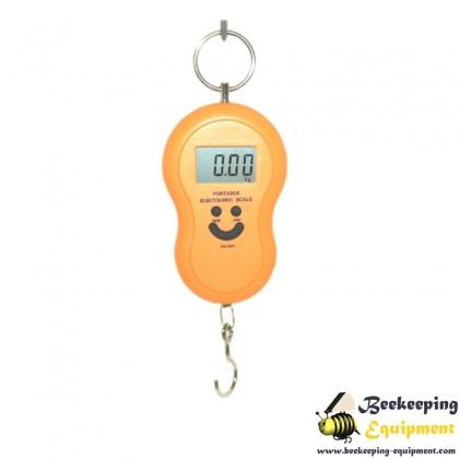 Handheld digital scales